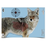 "TARGETS  COYOTE 16.5""X24"""