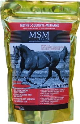 900G MSM POWDER