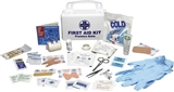 10 PIECE FARM/WORK/AUTO FIRST AID KIT