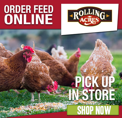 Order Feed Online & Pick Up In-Store: Shop now.